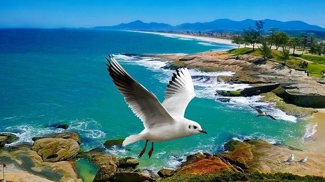 Foto de playa - Nancy Playa