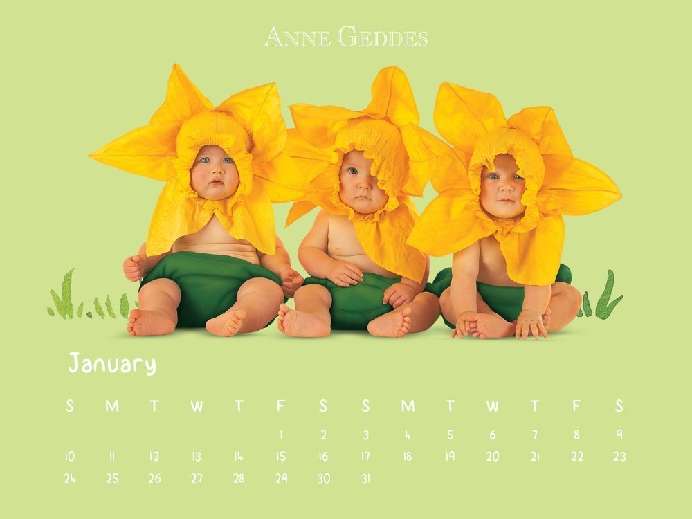 calendario Anne Geddes