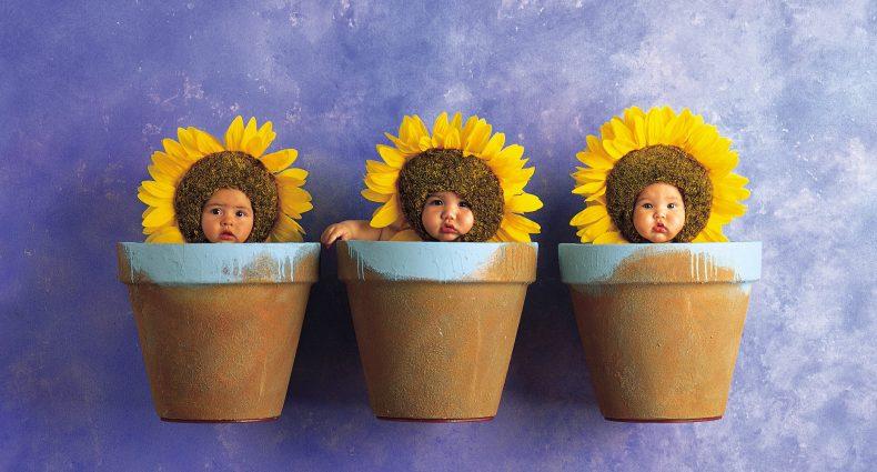Fotografía de Anne Geddes a bebés