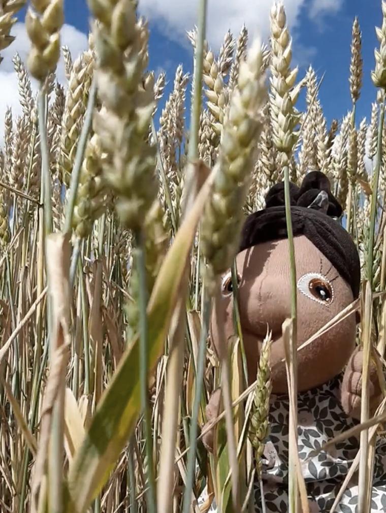 Rubens Tummies - Summer en campo de trigo